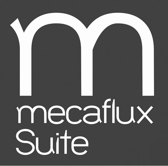 mecaflux standard